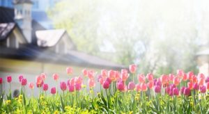 "The Housing Market Will ""Spring Forward"" This Year!"